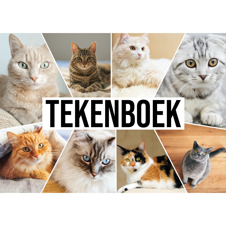 A4 Tekeningen papier boek/ schetsboek met katten/ poezen kaft