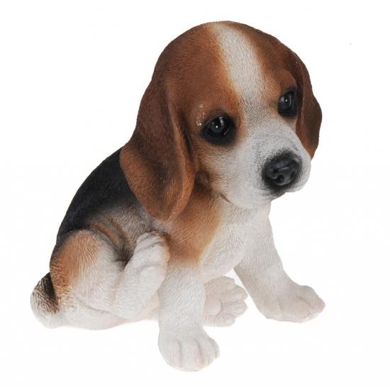 Beagle honden beeldje voor binnen 17 cm
