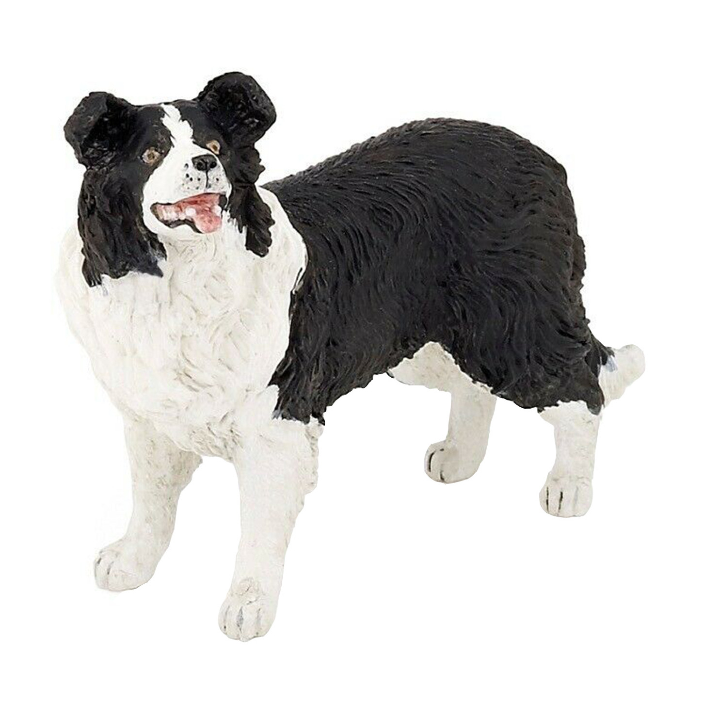 Border Collie hond plastic