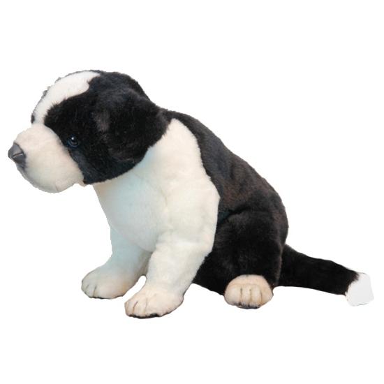 Border Collie pup knuffeldier 25 cm