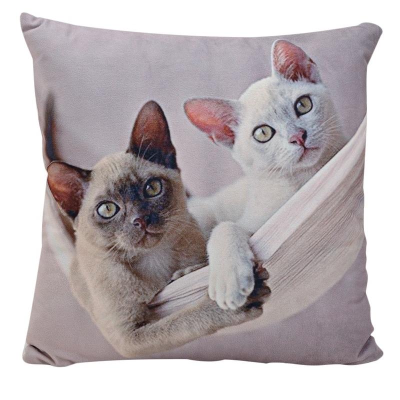 Decoratie kussens Siamese kitten/poes/kats 34 x 34 cm