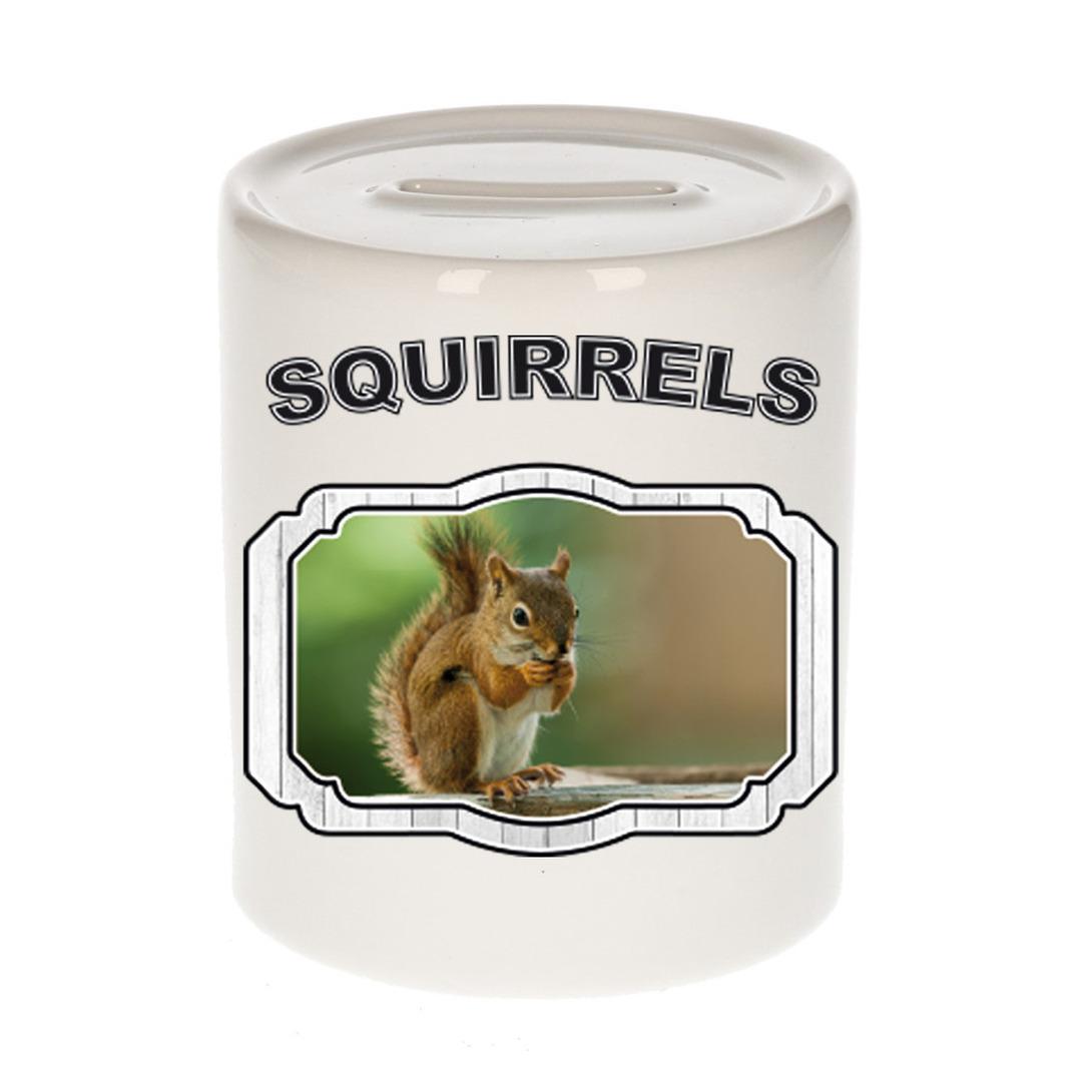 Dieren liefhebber eekhoorn spaarpot - eekhoorns cadeau
