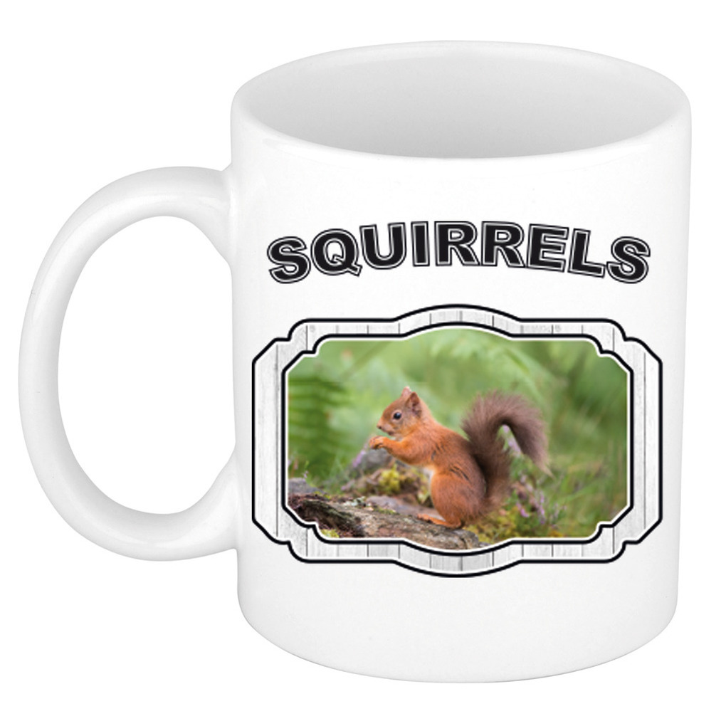 Dieren liefhebber eekhoorntje mok 300 ml - eekhoorntjes beker