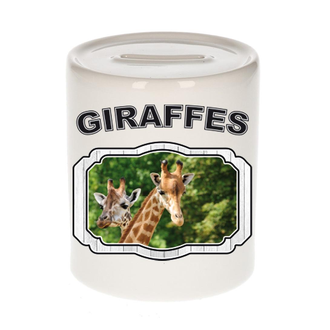 Dieren liefhebber giraffe spaarpot - giraffen cadeau