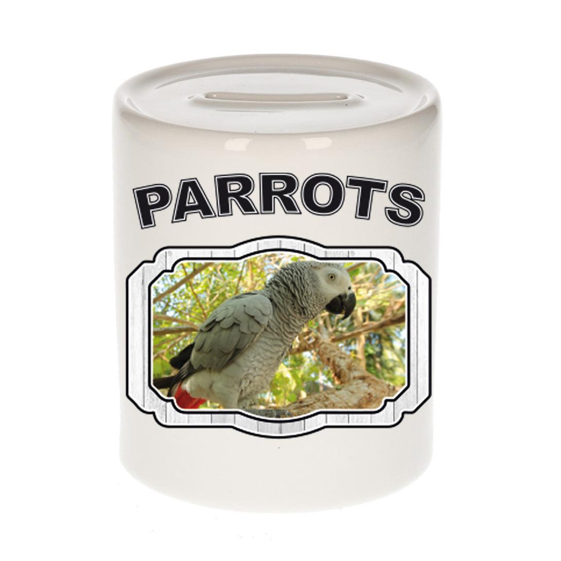 Dieren liefhebber grijze roodstaart papegaai spaarpot - papegaaien cadeau