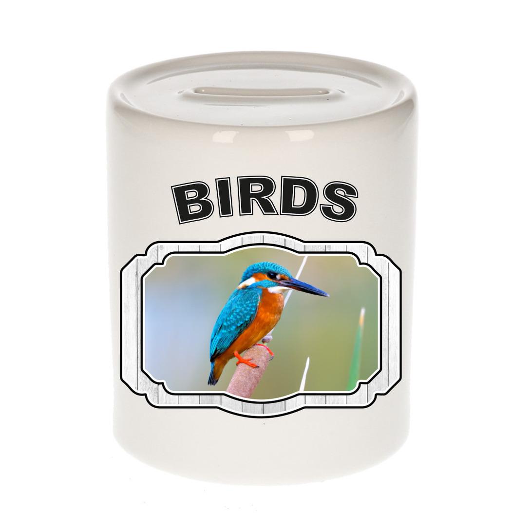Dieren liefhebber ijsvogel spaarpot - vogels cadeau