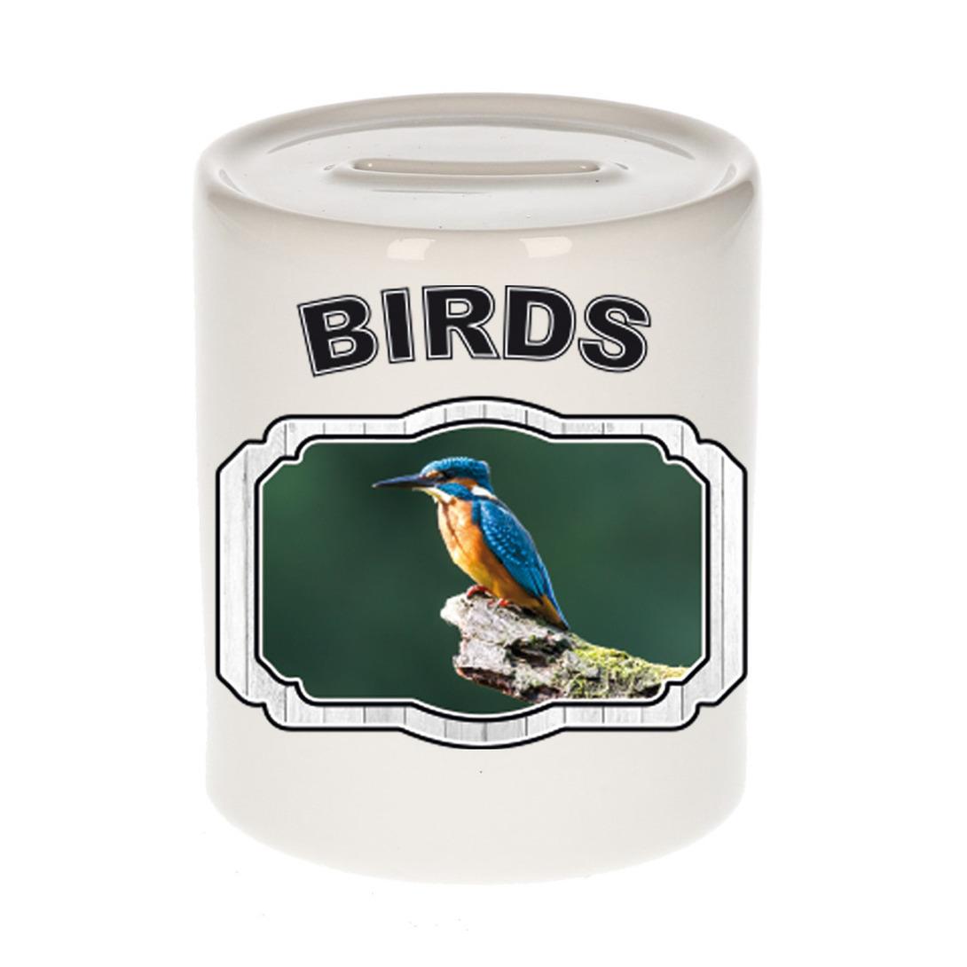 Dieren liefhebber ijsvogel zittend spaarpot - vogels cadeau