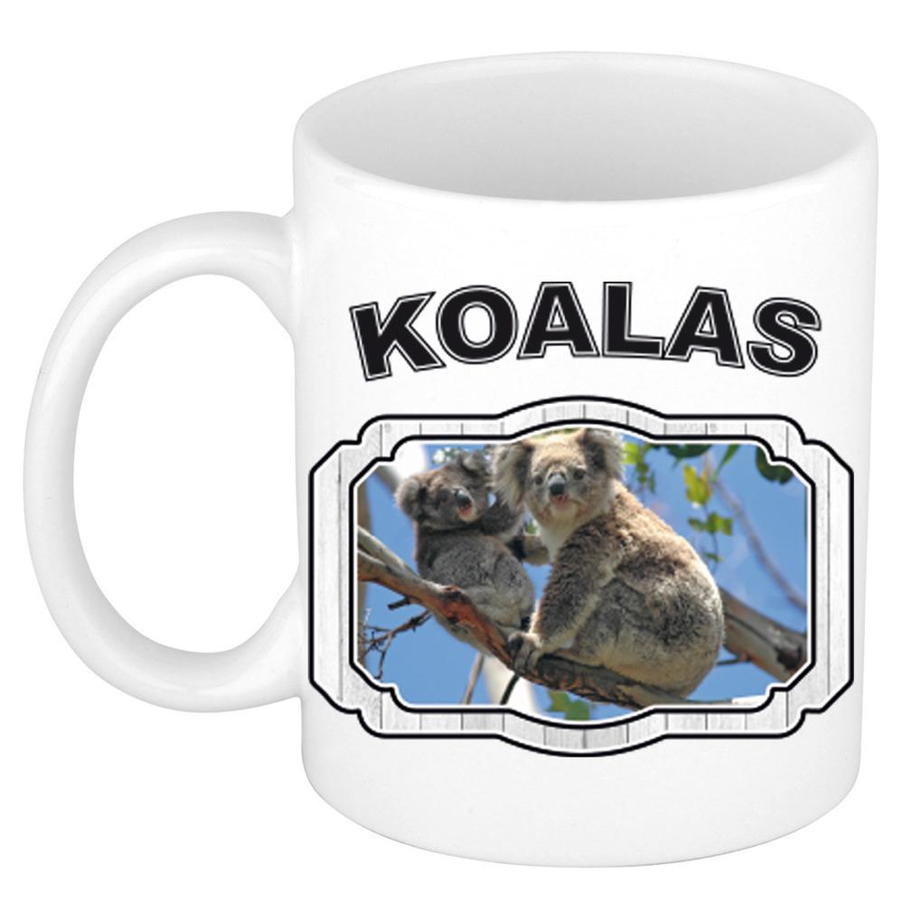 Dieren liefhebber koala beer mok 300 ml - koalaberen beker
