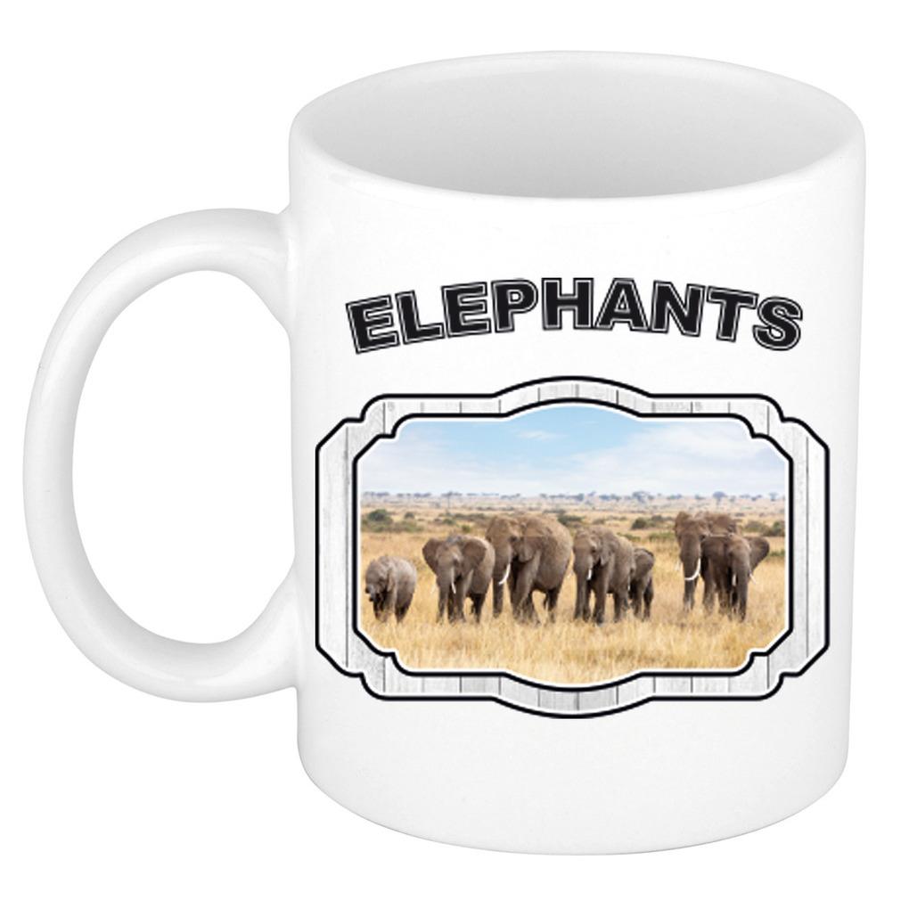 Dieren liefhebber olifant mok 300 ml - kudde olifanten beker