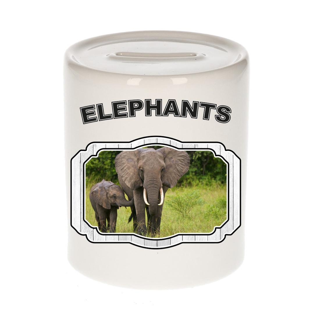 Dieren liefhebber olifant spaarpot - olifanten cadeau
