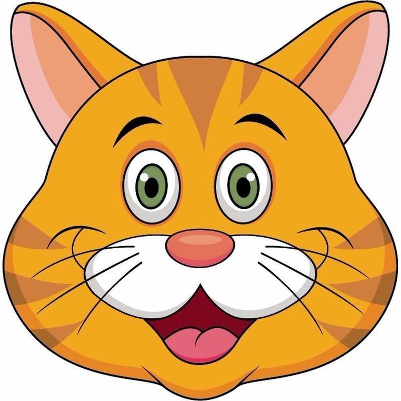 Dieren masker oranje kat/poes voor kids