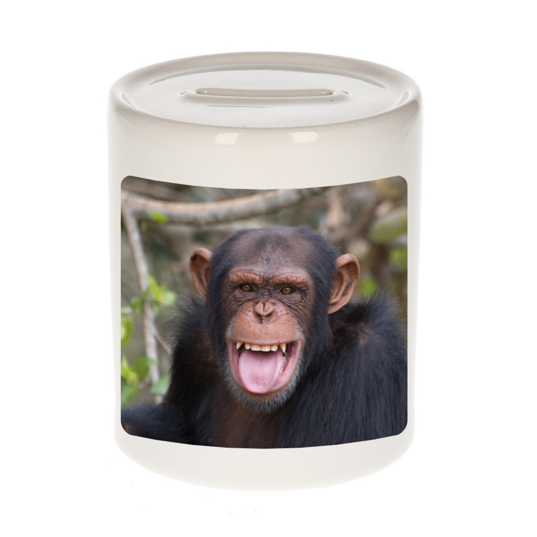 Foto chimpansee spaarpot 9 cm - Cadeau apen liefhebber