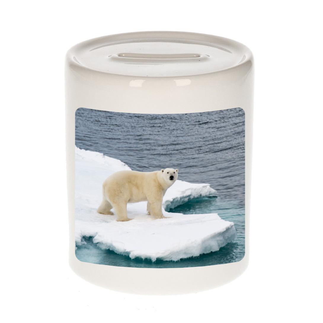 Foto ijsbeer spaarpot 9 cm - Cadeau ijsberen liefhebber