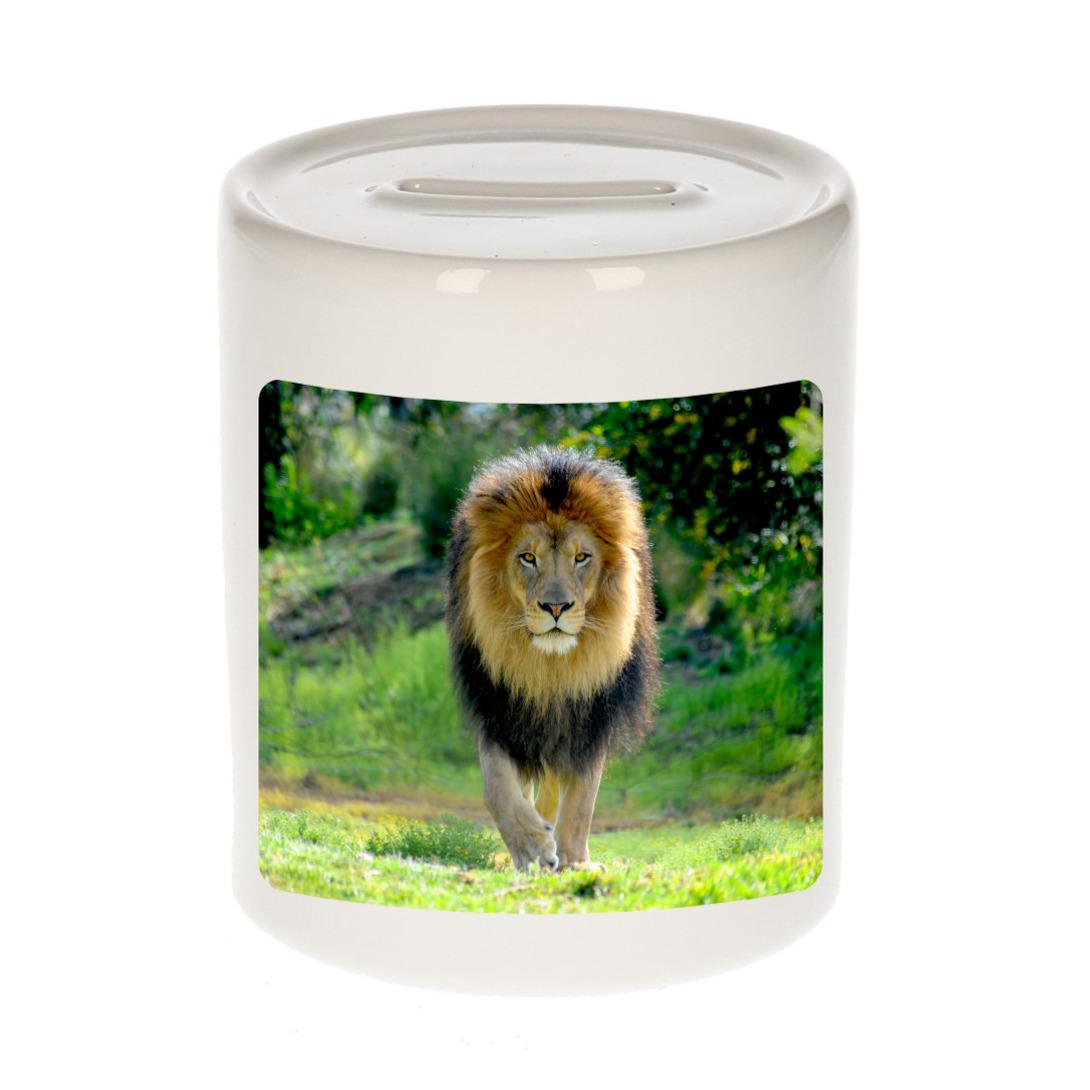 Foto leeuw spaarpot 9 cm - Cadeau leeuwen liefhebber