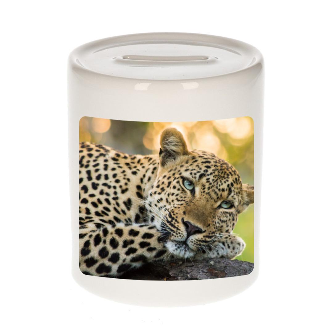 Foto luipaard spaarpot 9 cm - Cadeau jaguars/ luipaarden liefhebber