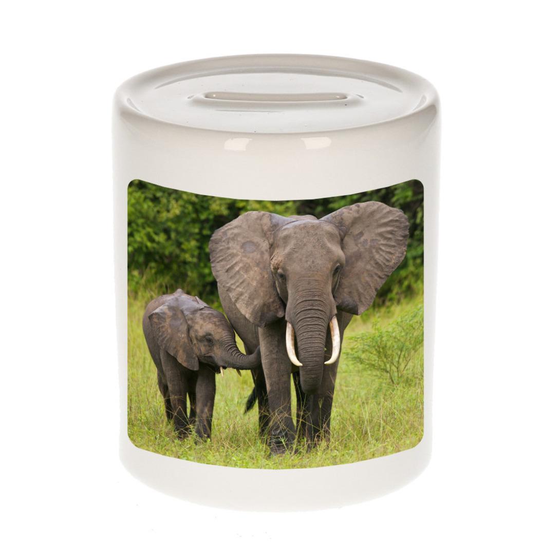 Foto olifant spaarpot 9 cm - Cadeau olifanten liefhebber