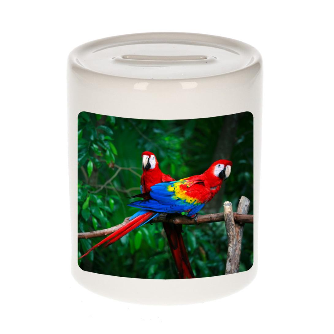 Foto papegaai spaarpot 9 cm - Cadeau papegaaien - ara liefhebber