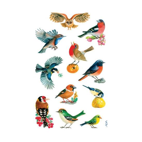 Gekleurde vogel stickertjes 3 vellen