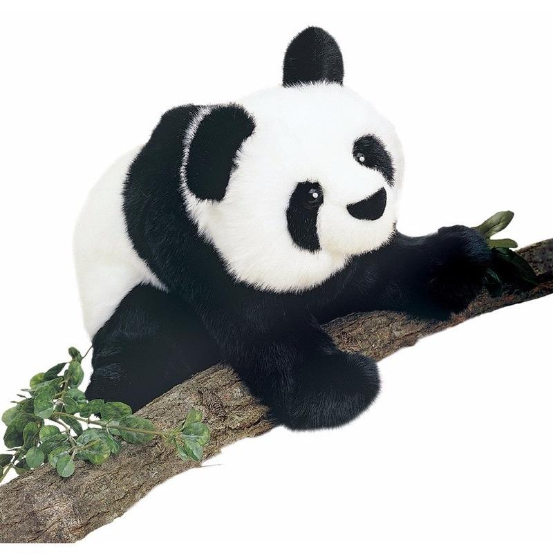 Grote pandabeer knuffel 38 cm