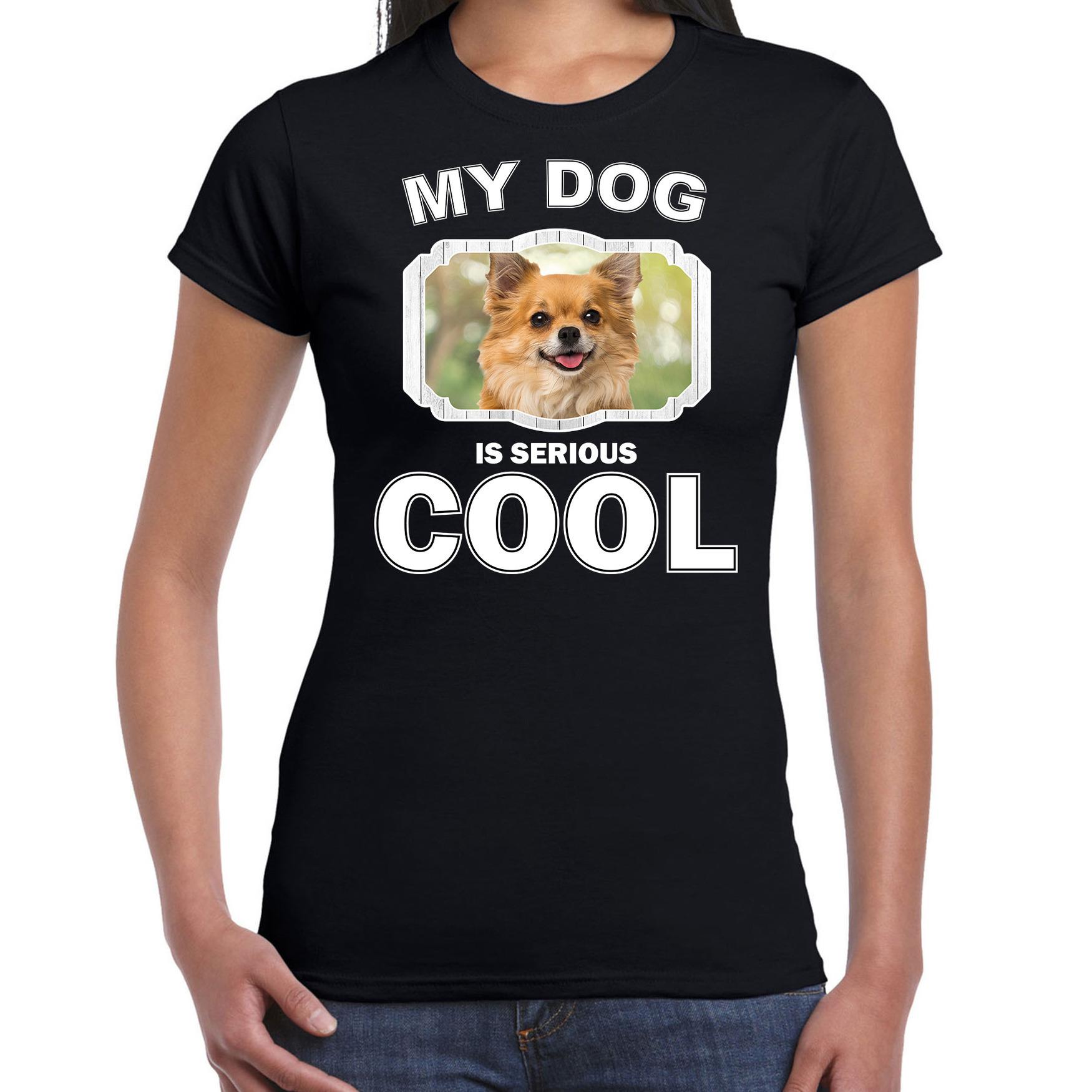 Honden liefhebber shirt Chihuahua my dog is serious cool zwart voor dames