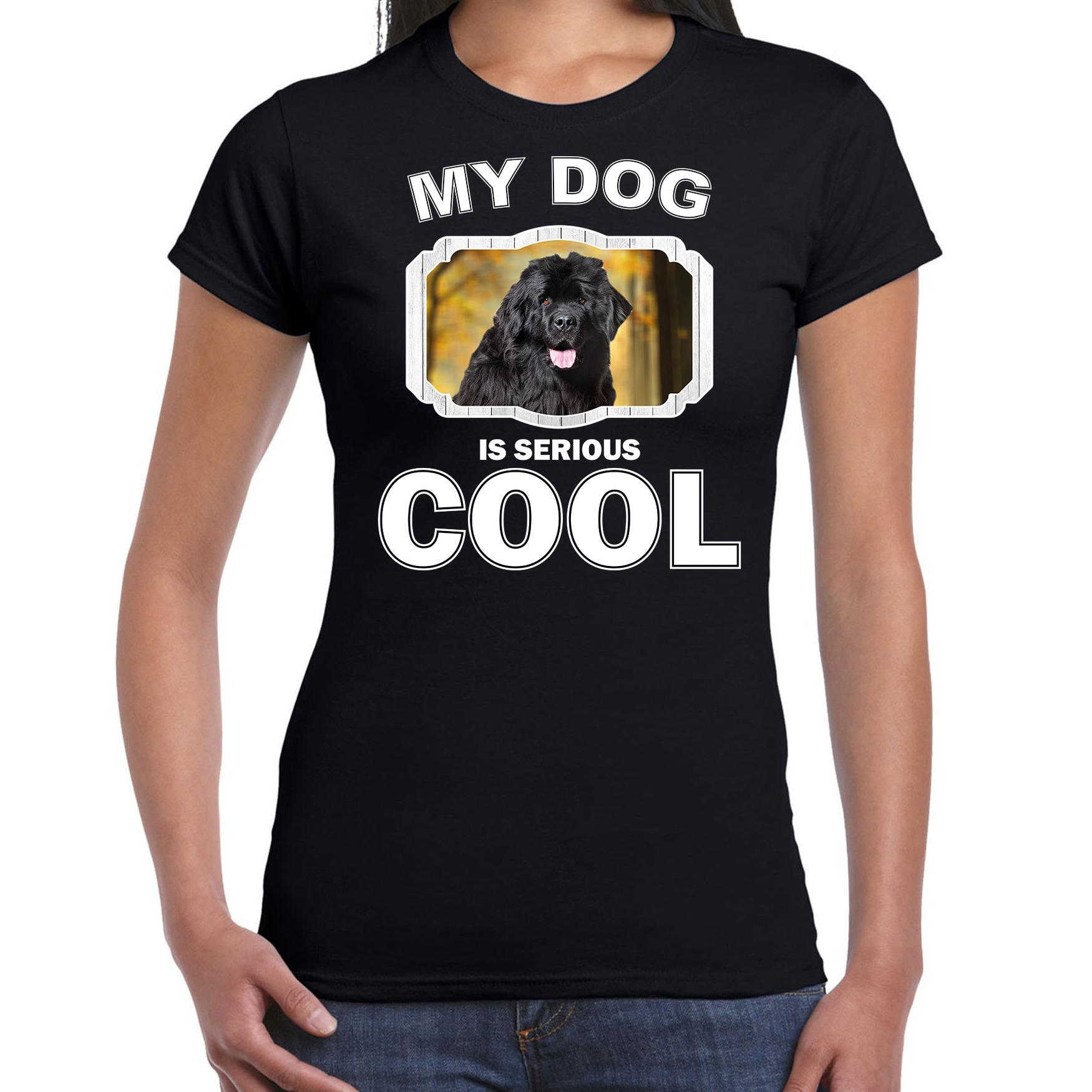 Honden liefhebber shirt Newfoundlanders my dog is serious cool zwart voor dames