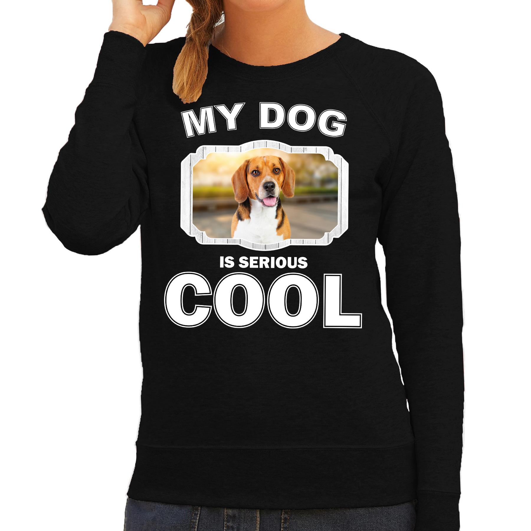 Honden liefhebber trui / sweater Beagle my dog is serious cool zwart voor dames