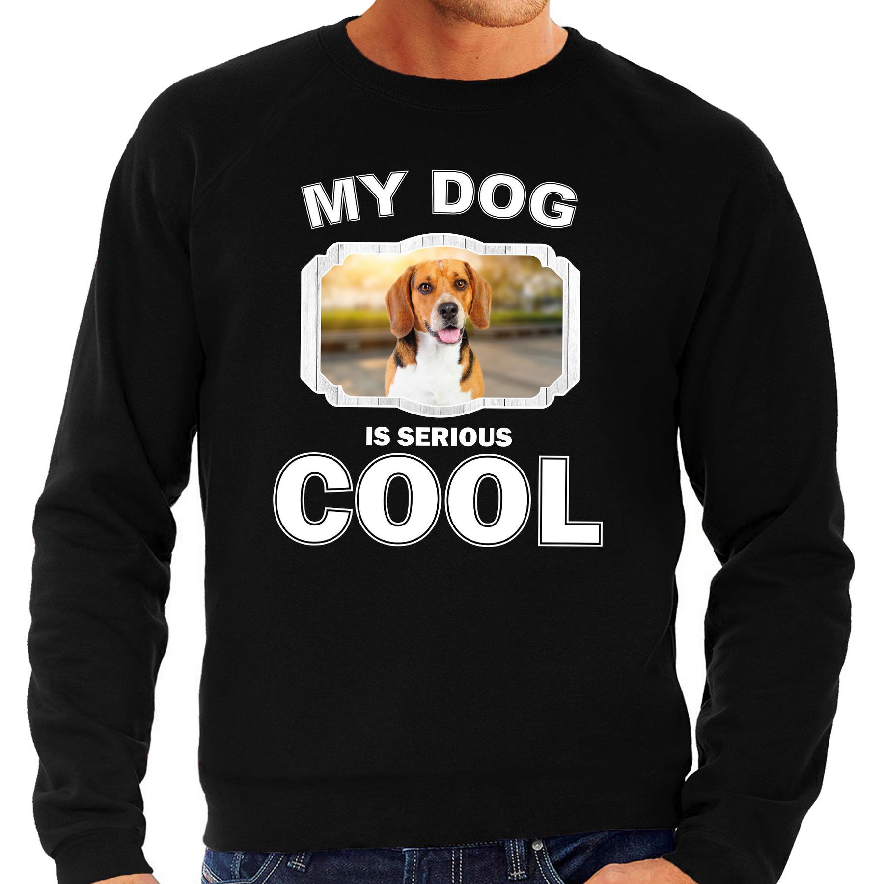 Honden liefhebber trui / sweater Beagle my dog is serious cool zwart voor heren