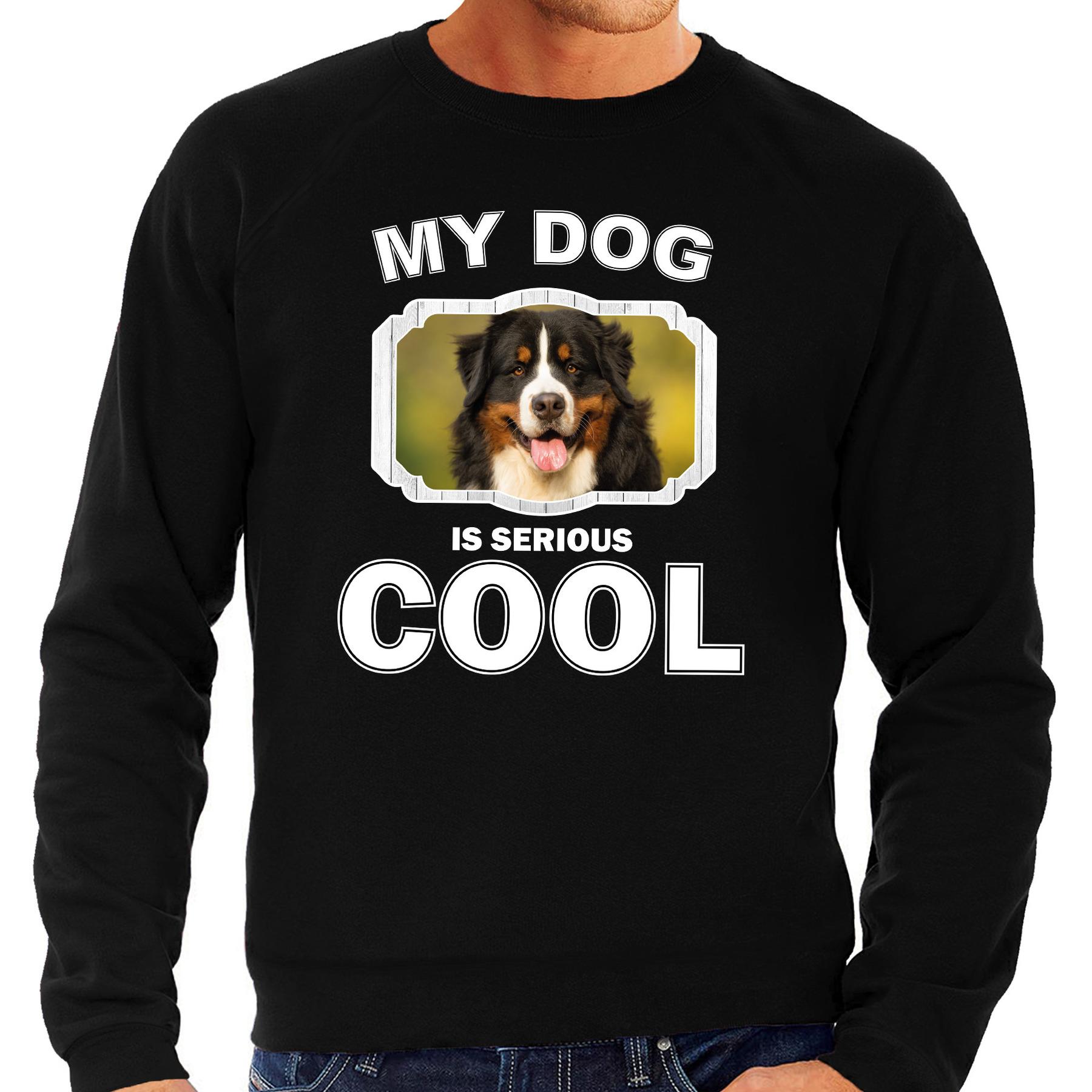 Honden liefhebber trui - sweater Berner sennen my dog is serious cool zwart voor heren