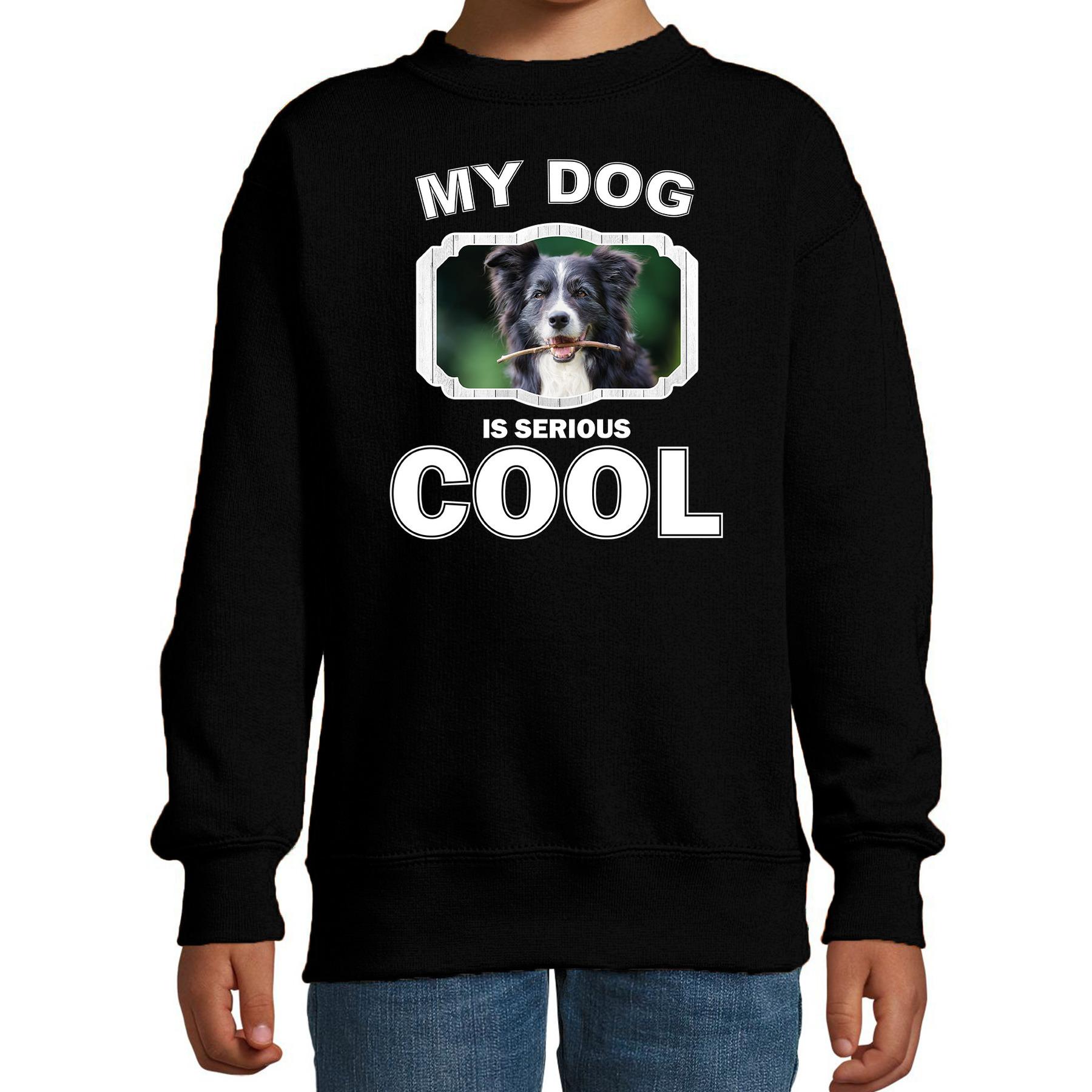 Honden liefhebber trui - sweater Border collie my dog is serious cool zwart voor kinderen
