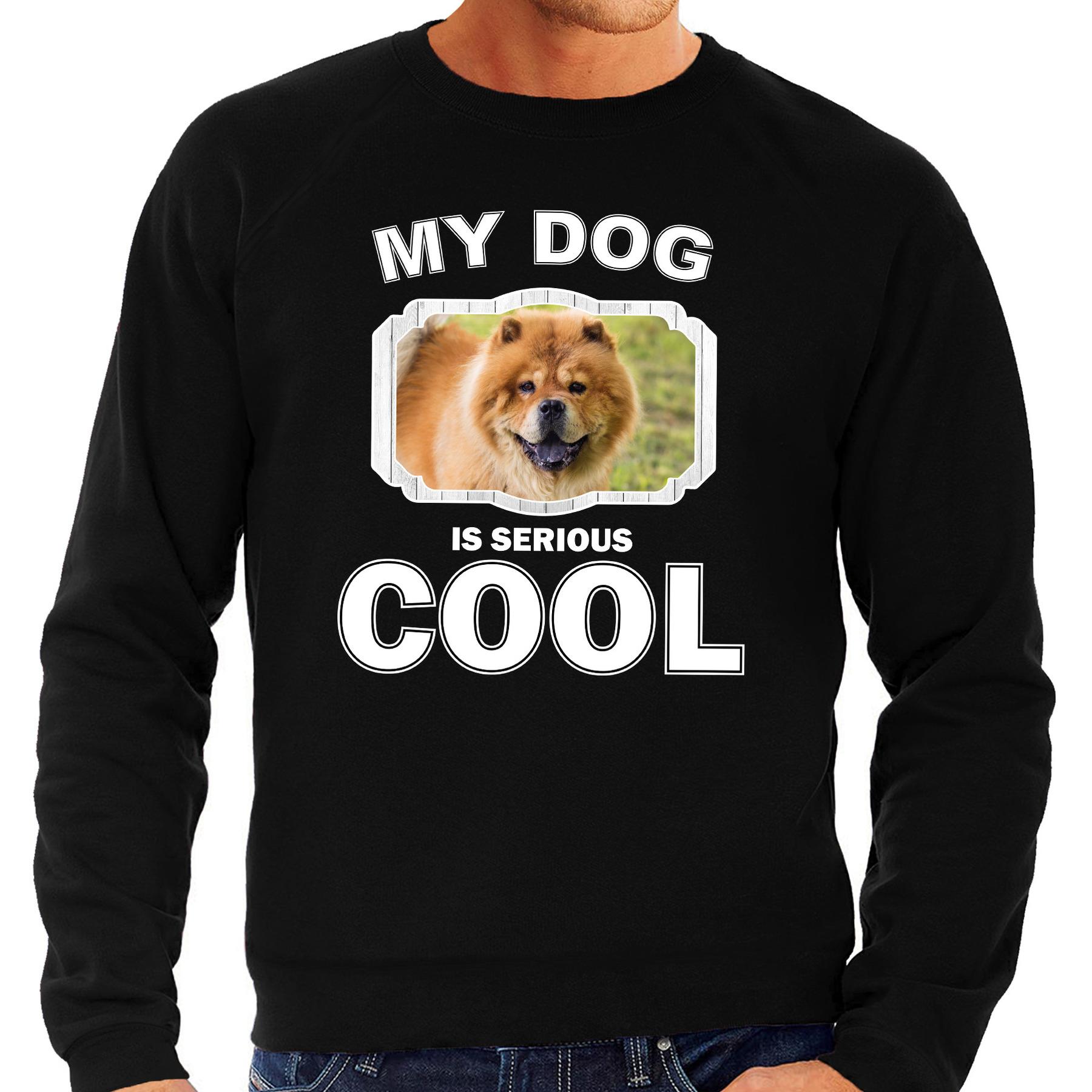 Honden liefhebber trui - sweater Chow chow my dog is serious cool zwart voor heren