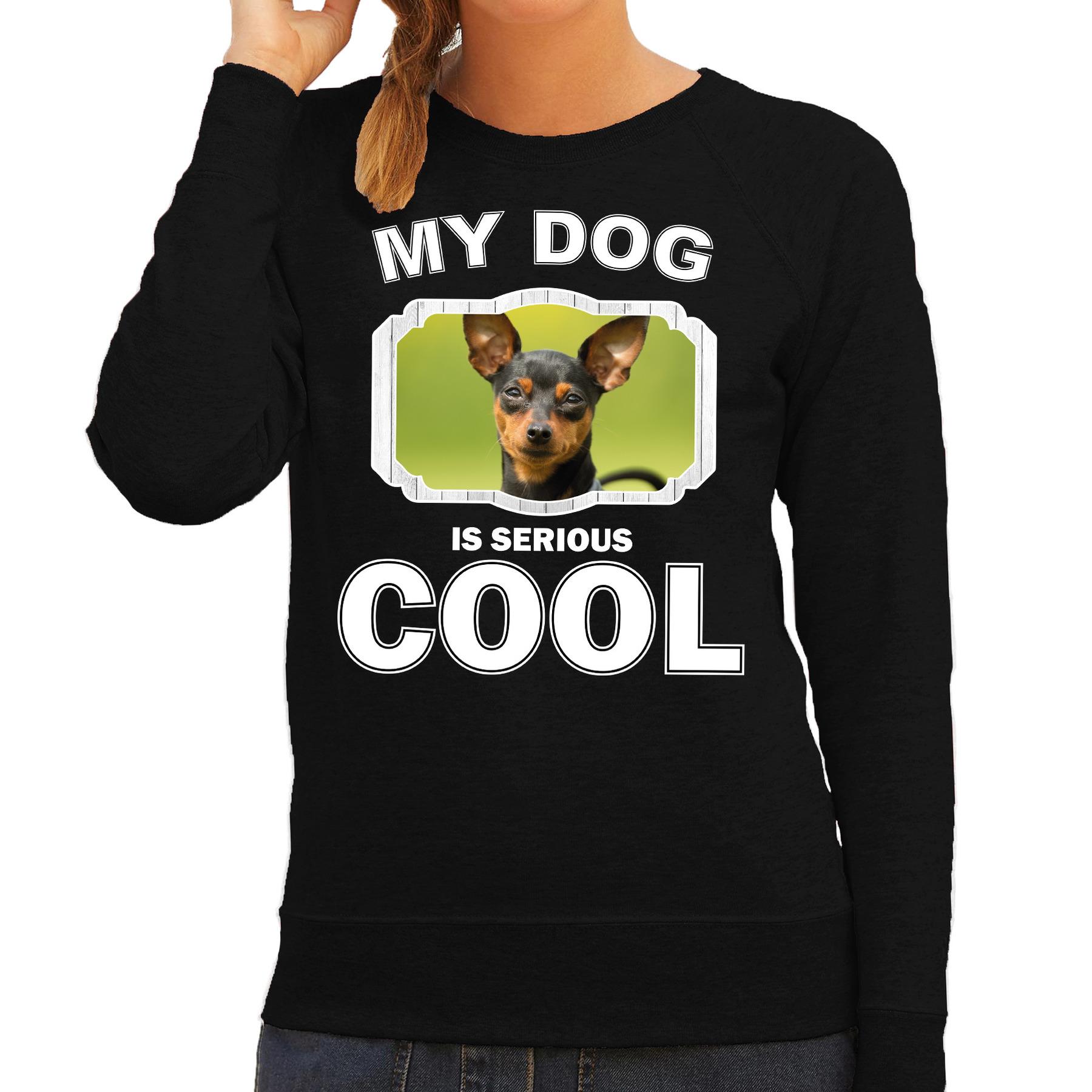 Honden liefhebber trui - sweater Dwergpinscher my dog is serious cool zwart voor dames