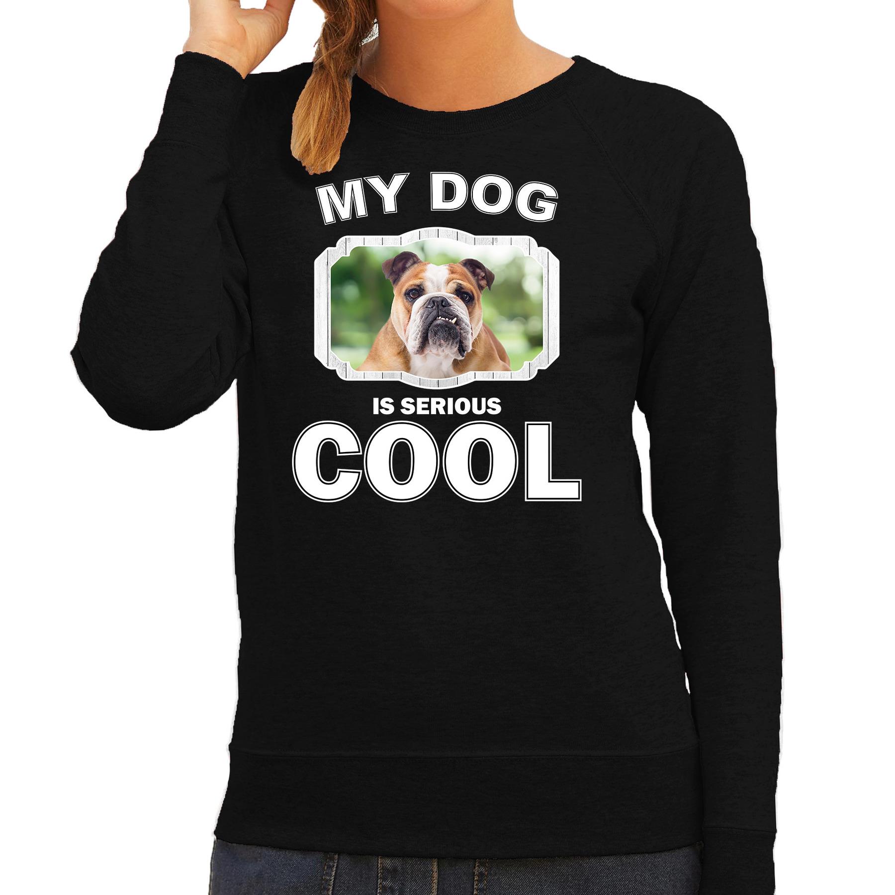 Honden liefhebber trui / sweater Engelse bulldog my dog is serious cool zwart voor dames
