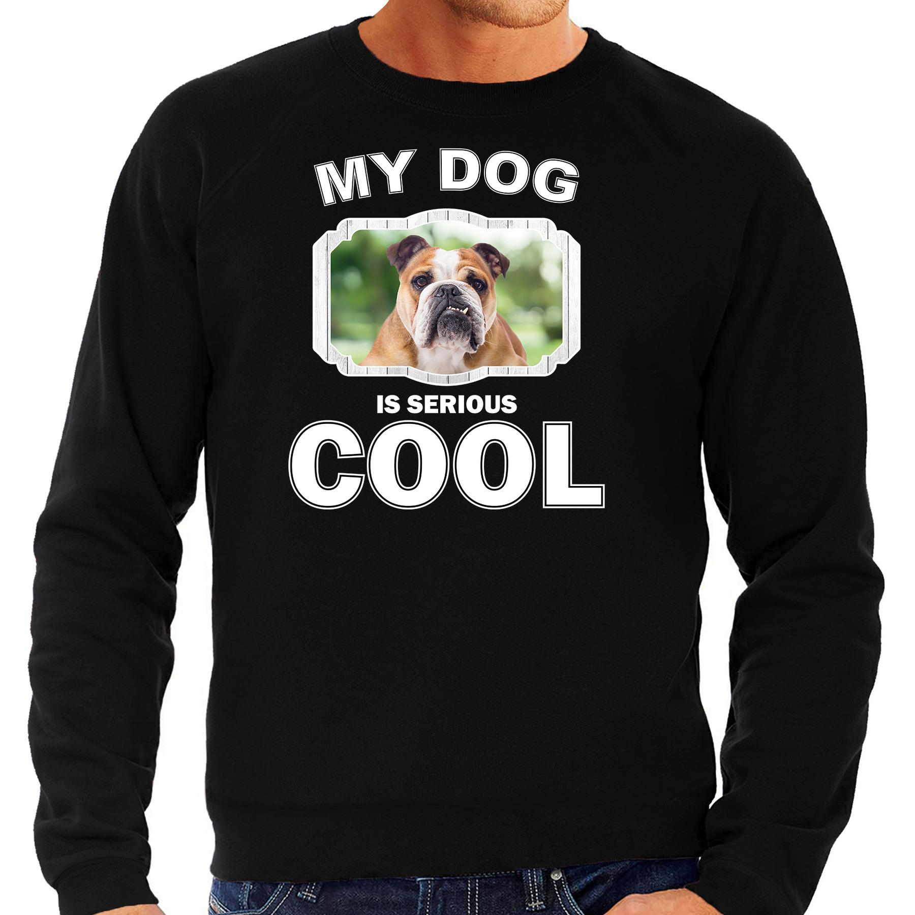 Honden liefhebber trui / sweater Engelse bulldog my dog is serious cool zwart voor heren