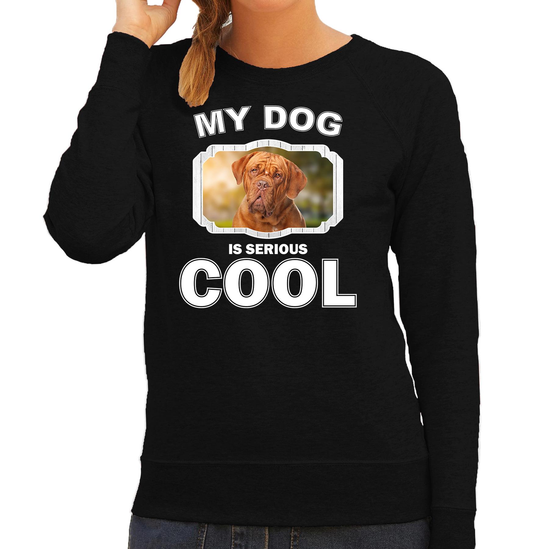 Honden liefhebber trui / sweater Franse mastiff my dog is serious cool zwart voor dames