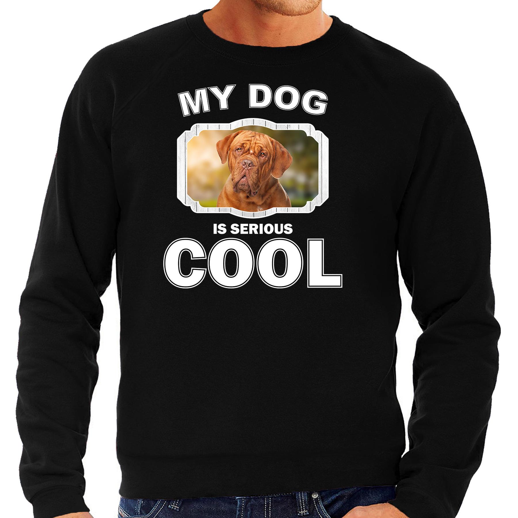 Honden liefhebber trui / sweater Franse mastiff my dog is serious cool zwart voor heren
