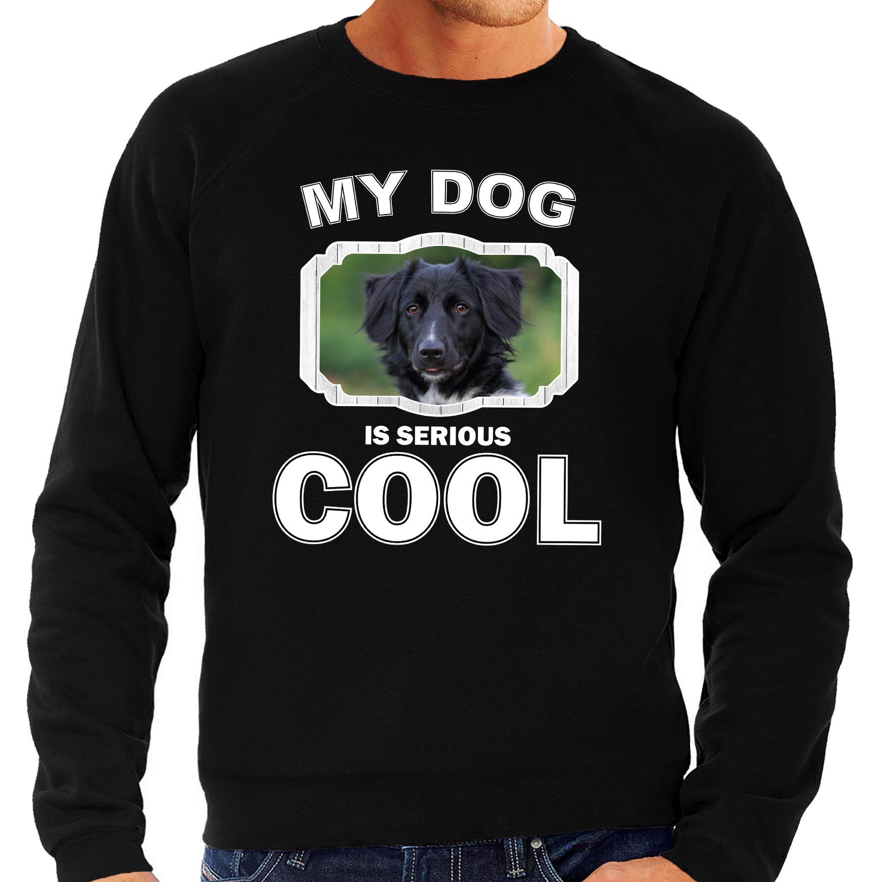 Honden liefhebber trui - sweater Friese stabij my dog is serious cool zwart voor heren