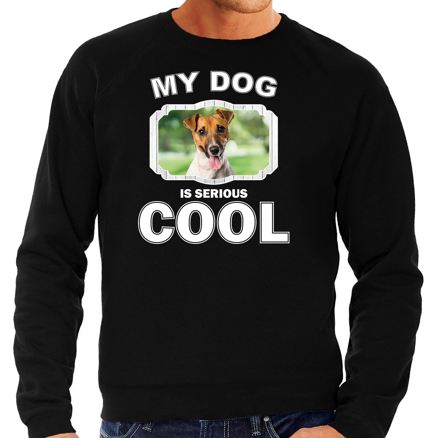 Honden liefhebber trui / sweater Jack russel my dog is serious cool zwart voor heren