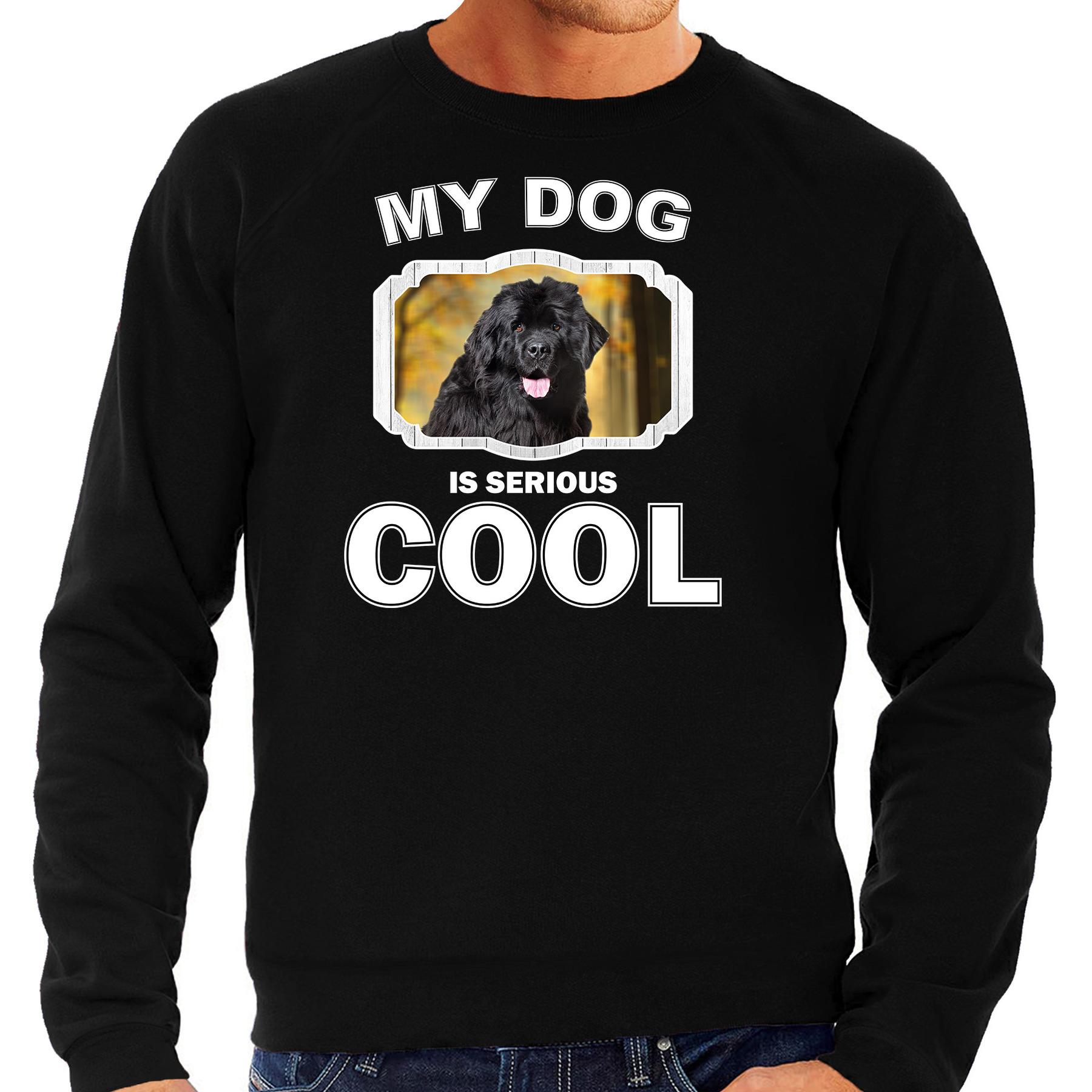 Honden liefhebber trui / sweater Newfoundlander my dog is serious cool zwart voor heren