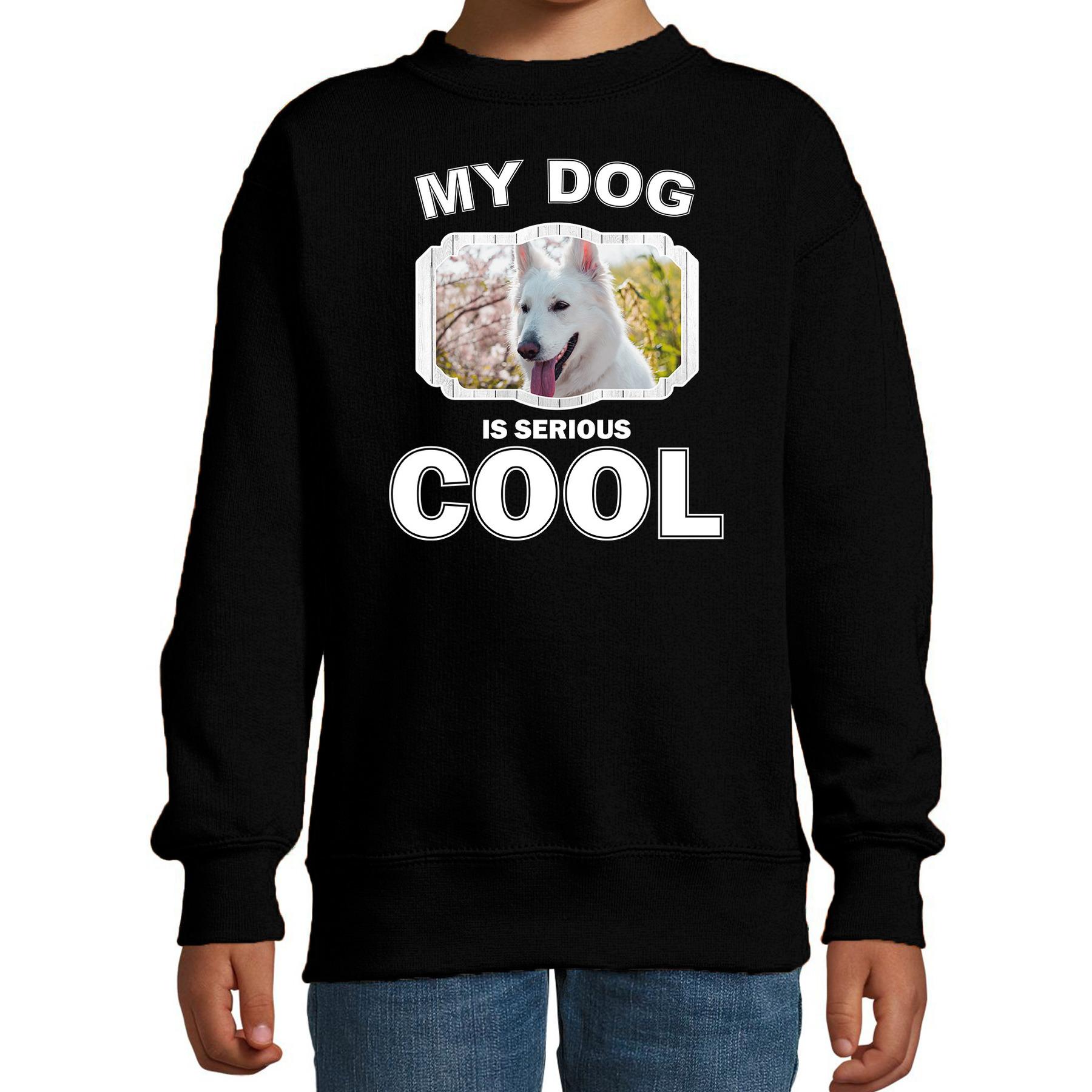 Honden liefhebber trui - sweater Witte herder my dog is serious cool zwart voor kinderen