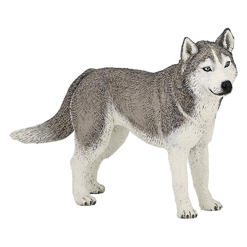 Husky hond plastic