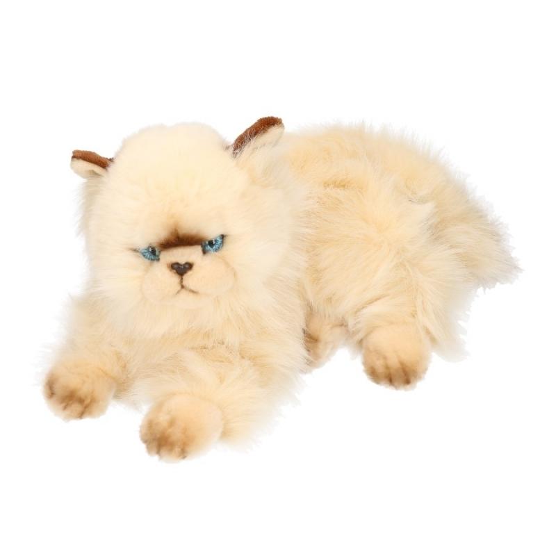Knuffel kat persisch van 30 cm