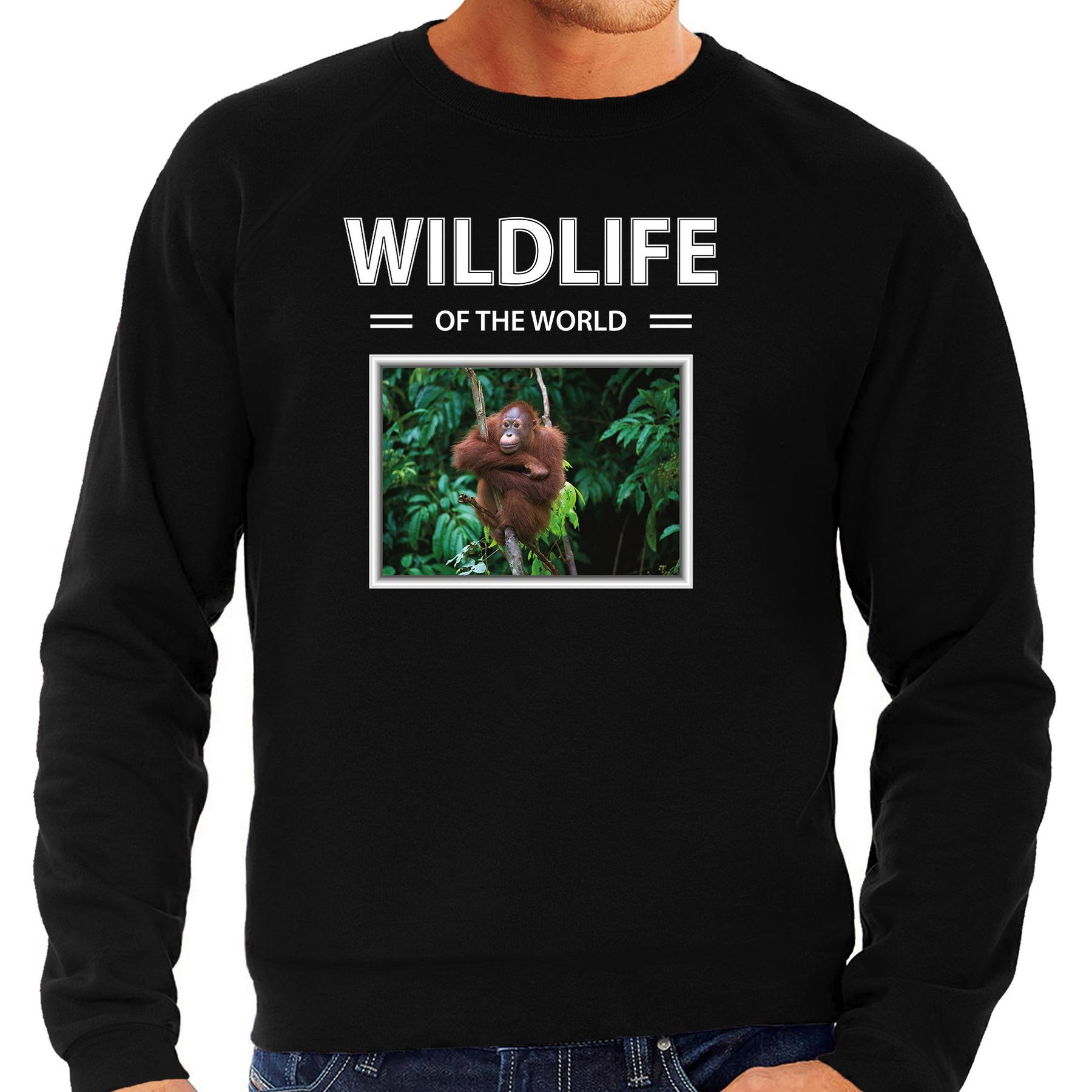 Orang oetan aap foto sweater zwart voor heren - wildlife of the world cadeau trui Orang oetans liefhebber