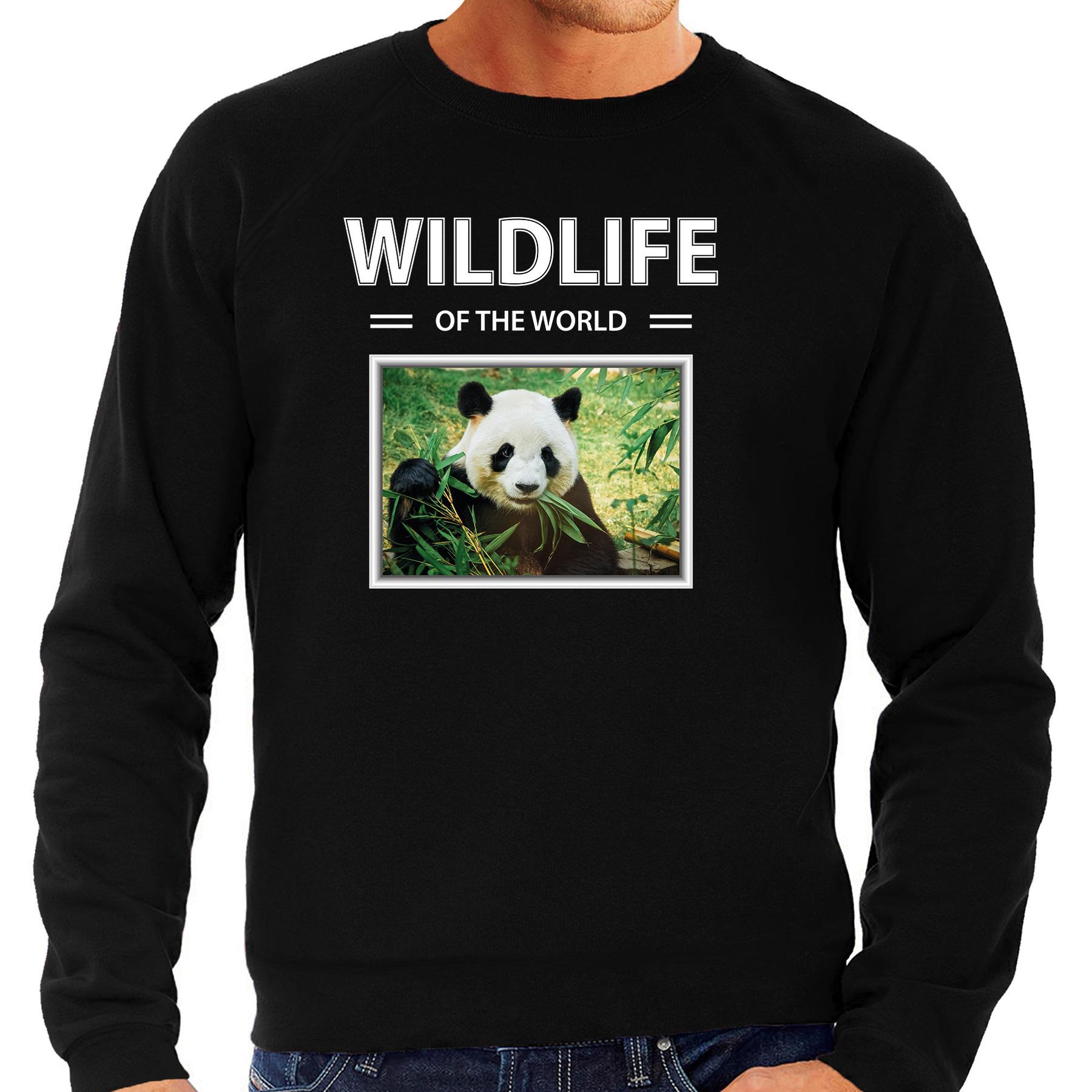 Panda foto sweater zwart voor heren - wildlife of the world cadeau trui Pandas liefhebber