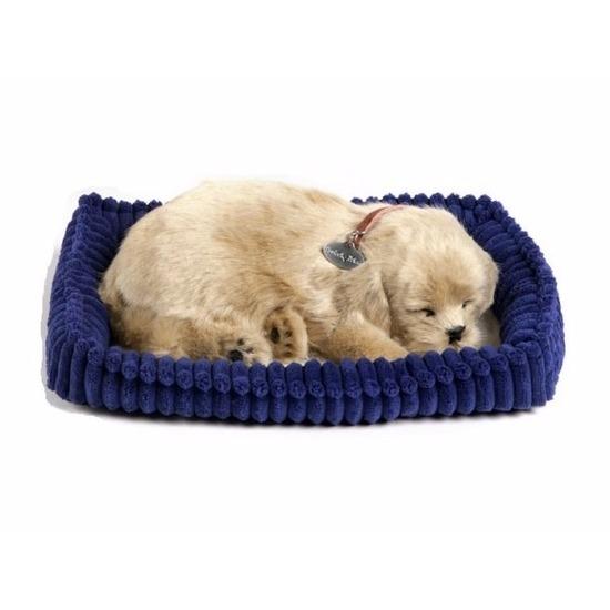 Perfect Petzz Golden Retriever knuffel hond