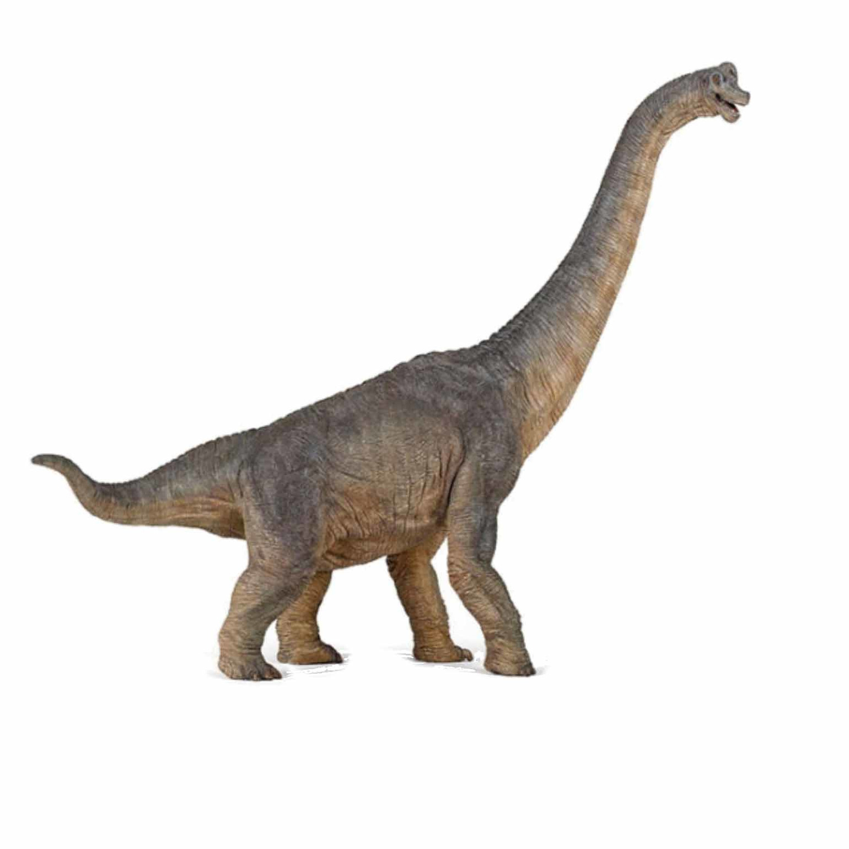 Plastic speelfiguur braciosaurus dinosaurus 39,5 cm