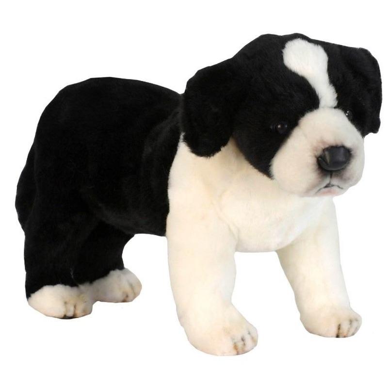 Pluche honden Border Collie 39 cm