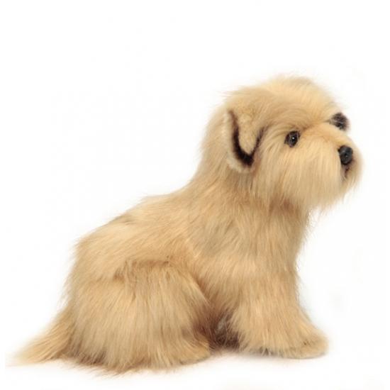 Pluche Norfolk Terrier 23 cm