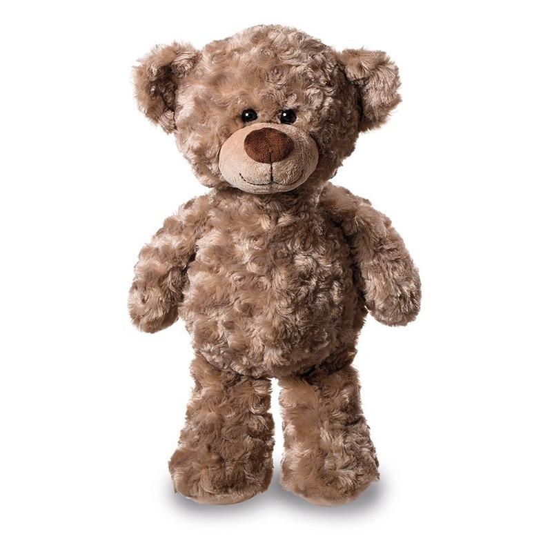 Pluche teddybeer / beren knuffel 24 cm