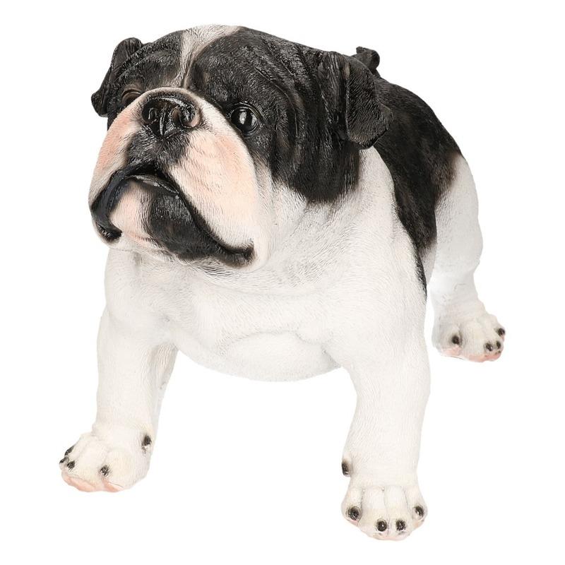 Polystone tuinbeeld zwart/witte Engelse Bulldog 41 cm