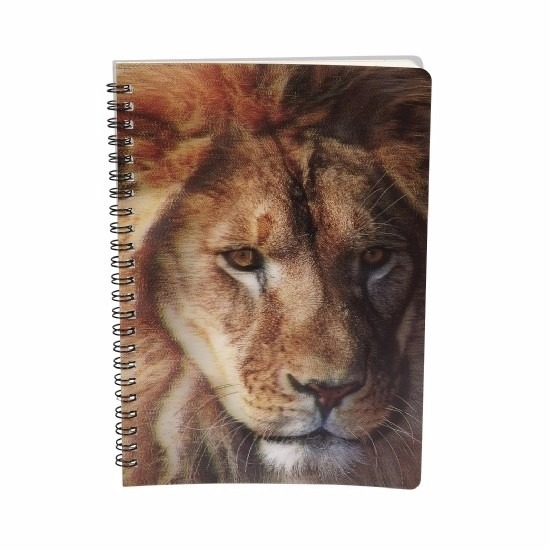 Schriftje leeuw 3D 21cm